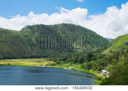 Bay at Lake Toba with rice fields, Indonesian landscape, North Sumatra