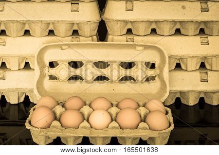 Egg Box With Ten Organic Chicken Eggs Inside