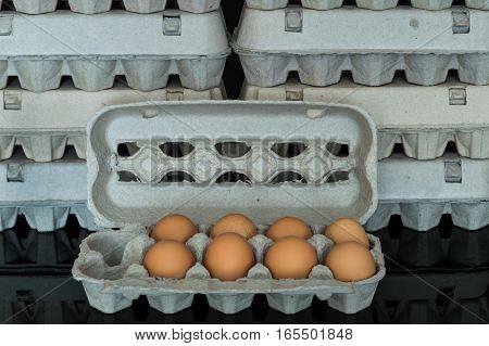 Egg Box With Eight Organic Chicken Eggs Inside