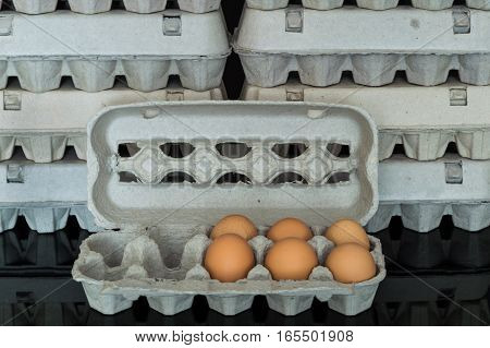 Egg Box With Six Organic Chicken Eggs Inside