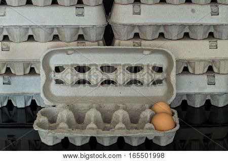 Egg Box With Two Organic Chicken Eggs Inside