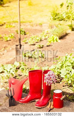 gardening tools outdoor in garden red rubber boots and water can
