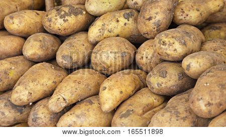 Bunch of Potatoes at Farmers Market Stall