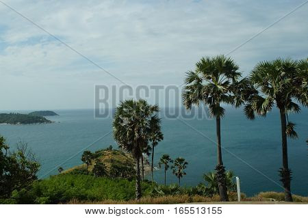 views of the sea and Islands in Thailand, palm trees and greenery