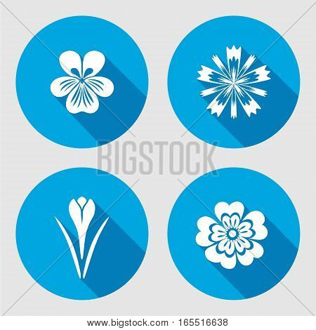 Flower icons set. Primula, viola, blue poppy, Crocus, Saffron. Spring flowers. Floral symbols with leaves. Color icons. May be used in cuisine. Vector isolated.
