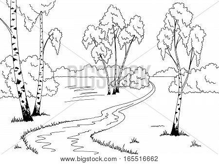 Birch grove graphic black white sketch landscape illustration vector