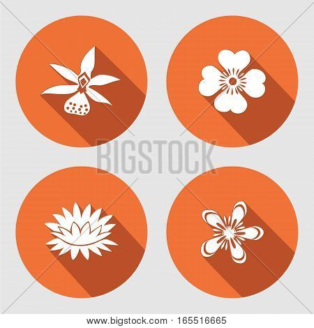 Flower icons set. Anemone, chamomile, forget-me-not, lily, waterlily, orchid. Floral symbols. Round circle flat sign with long shadow. Vector