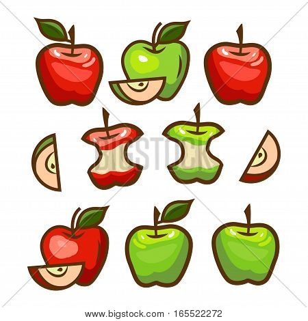 Fresh green and red apples. Vector illustration.