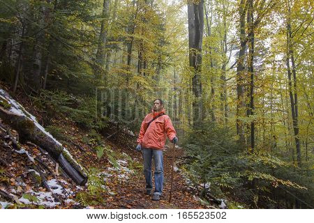 Tourist walking along a forest trail. Travels