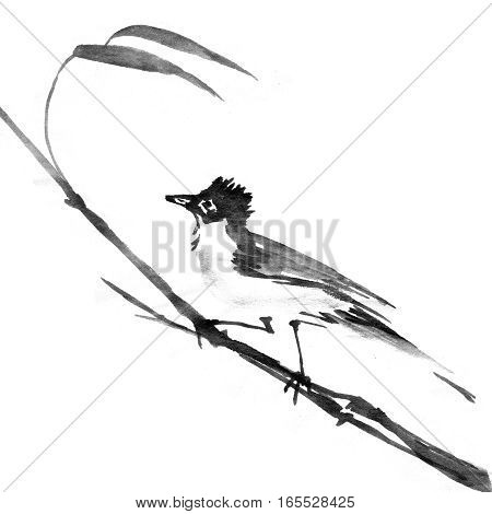 Sumi-e ink bird on a branch. Watercolor painting, black on white background.