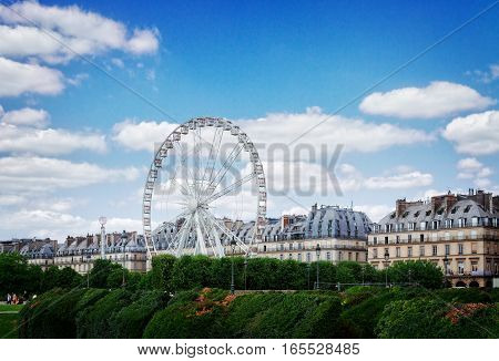 lawn of Tuileries garden with ferry wheel at summer day, Paris, France, retro toned