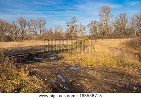 Autumnal landscape with an dirty road through water meadow in Poltavskaya oblast Ukraine