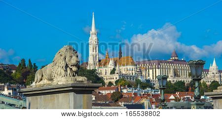Lion Sculptures Of The Chain Bridge With The View Of Budapest, Hungary