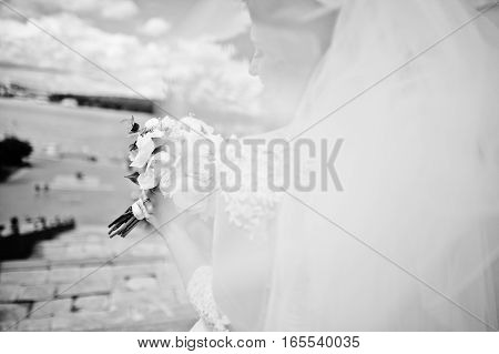 Cheerfull Brunette Bride With Long Veil Against Blue Sky With Amazing Clouds Background City Lake. B