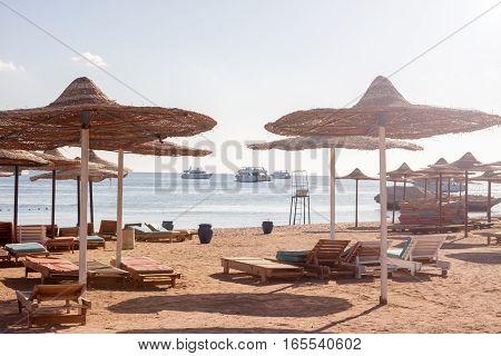 sun umbrellas abd sunbeds at Egyptian beach