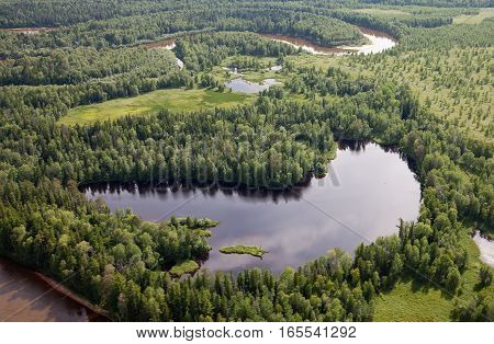 Top view on lake in forest during summer day