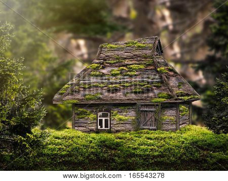 Fabulous house in the woods. A lot of moss on the house
