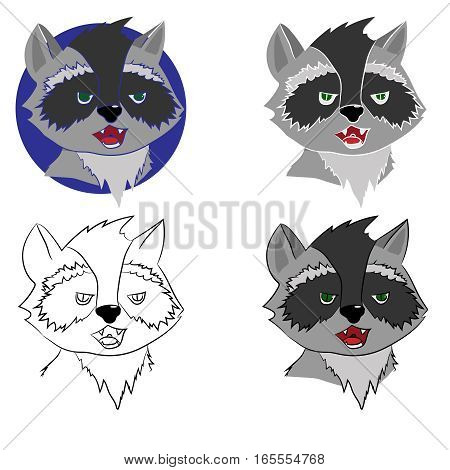 Four raccoon on a white background, vector