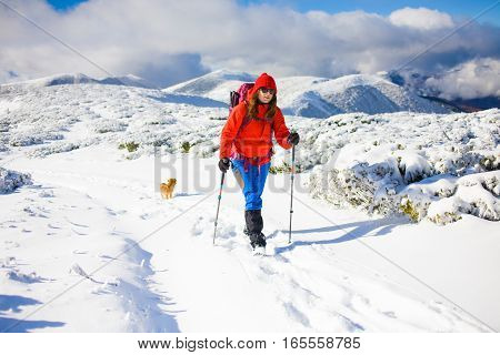 Girl With Dog In Winter Mountains.