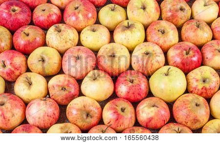 Rows of red apples on a wooden surface. Top View