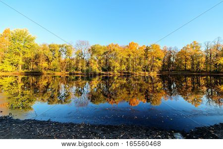 landscape with reflections of autumn trees in the water