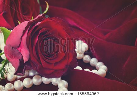 one fresh red rose with pearls on scarlet velvet background, retro toned