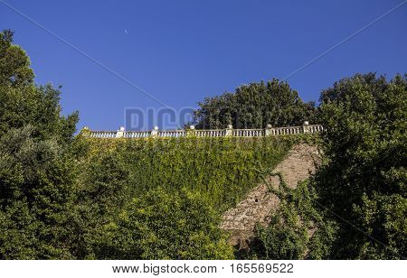 Ivy covered wall and ancient balustrade, background, Rome, Italy