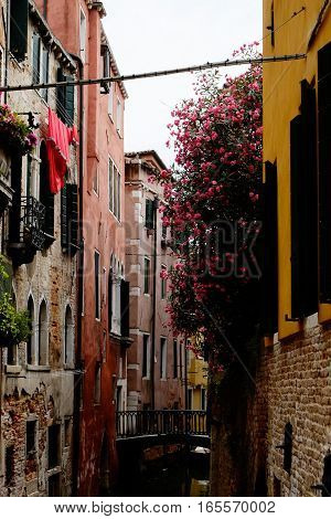 Beautiful colorful street with flowers and canal in Venice Italy.