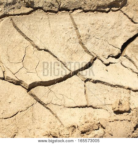 Dry cracked land on a hot summer day. Photo closeup