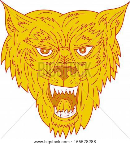 Mono line style illustration of an angry wolf head viewed from front set on isolated white background.