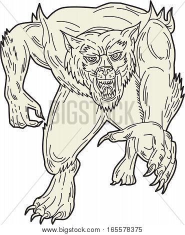 Mono line style illustration of a werewolf monster running forward set on isolated white background viewed from front.
