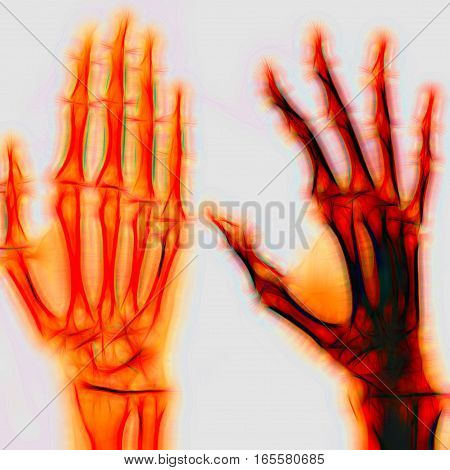 Human Hand. Illustration
