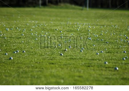 Many golf balls on the green grass