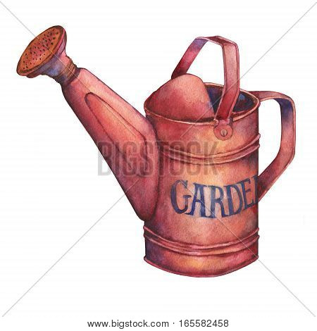 Gardening tools rusty red watering can for watering flowers. Hand drawn watercolor painting on white background.