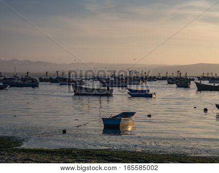 Paracas National Reserve. Paracas fishing port. America