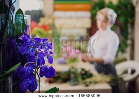 Calm female florist is making bouquet in store. Focus on beautiful blue orchid