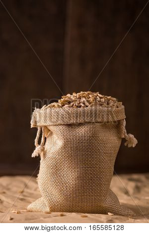 grains of oats in a small bag