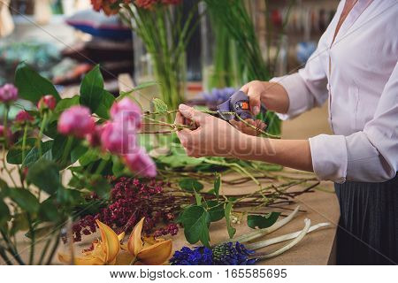 Close up of female arms making bouquet in workshop. Woman is holding scissors near branches of roses