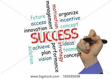 Business Success Concept And Other Related Words,hand Drawn