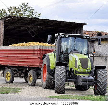 Farmer on tractor harvesting corn in autumn season
