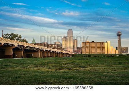 Dallas Skyline Daytime With The Bridge and Grass