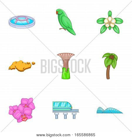 Singapore national cultural symbols icons set. Cartoon illustration of 9 Singapore national cultural symbols vector icons for web