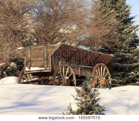 A old abandoned farm wagon with wood wheels probably  used for hauling farm produce and probably pulled by horses.