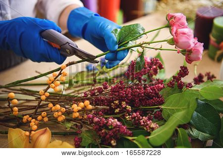 Close up of female arms cutting rose by scissors at flower shop