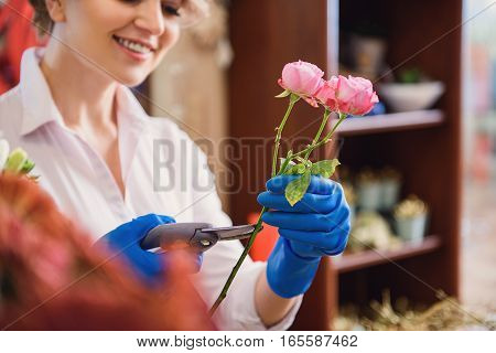 Happy female florist is making bouquet with interest. She is holding branch of pink roses and cutting it accurately. Lady is smiling