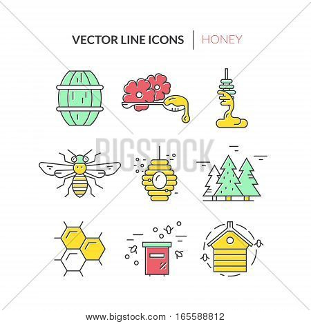 Colorful icons with honey, bee, hive and other bee labor related elements. Modern vector honey collection.