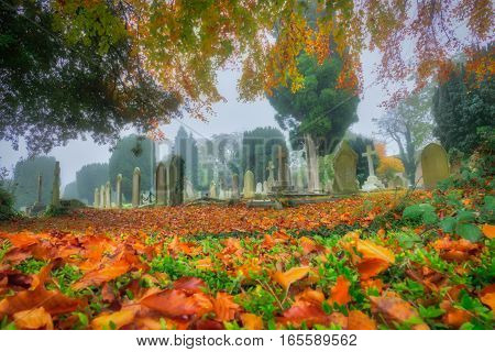 English cemetery on a cloudy, misty and foggy autumn day