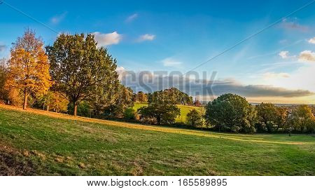 Panorama of a beautiful meadow in a park in spring, England