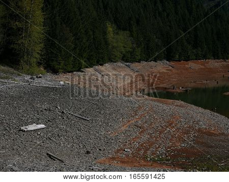 The rocky shores of Blue River Lake with stumps in the forest in Western Oregon on a spring day.