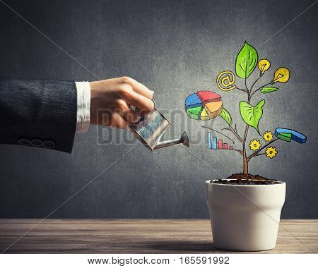 Hand of businesswoman watering concept of business plan and strategy